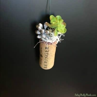 DIY wine cork planter with green plant