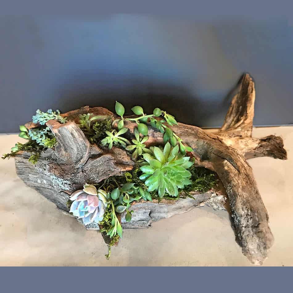 Turn a cedar trunk into a planter
