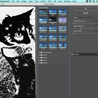 Step 10 Cutout Effect Filter