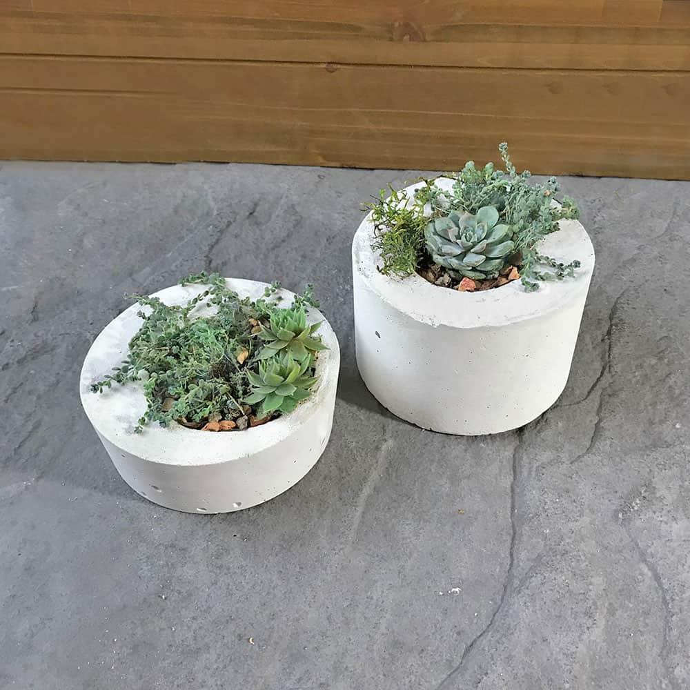 modern concrete planters | DIY