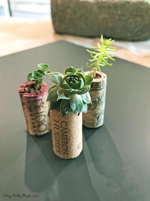 Set of 3 DIY wine cork planters