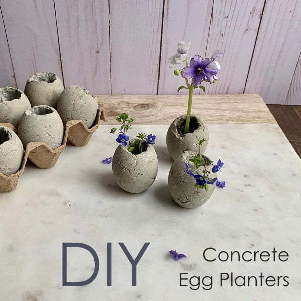 Cement Planters Tutorial