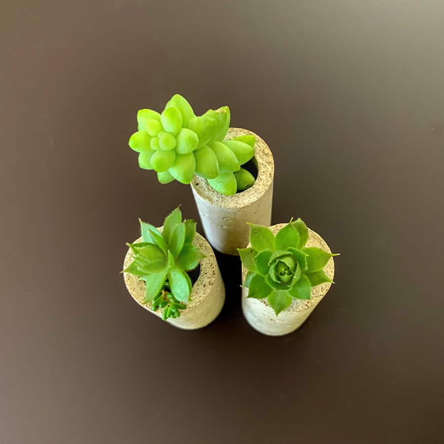 concrete wine cork planters