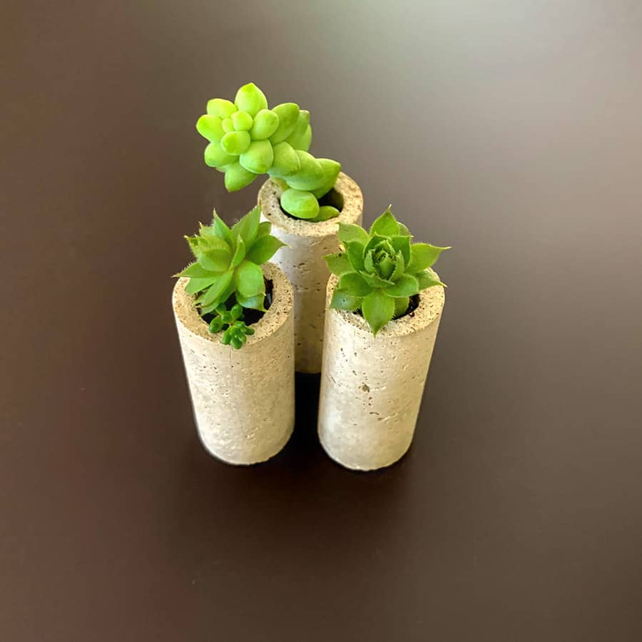 succulents in DIY concrete wine cork planters