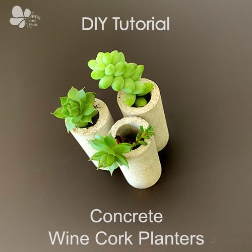 cement wine cork planters