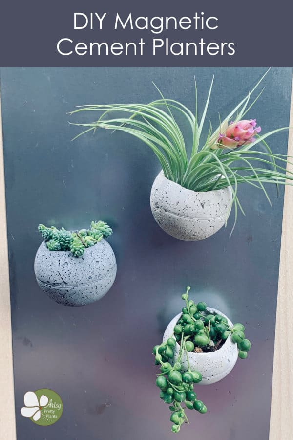 DIY round cement planters