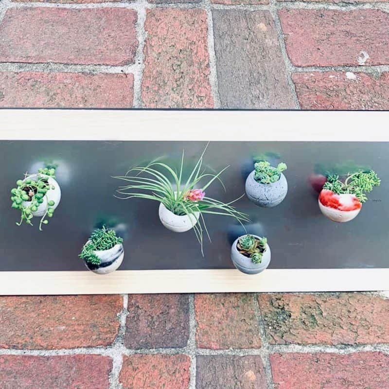 board with magnetic cement planters