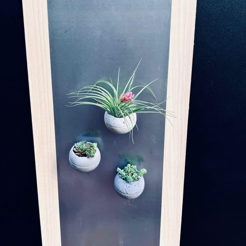 Tiny magnet planters