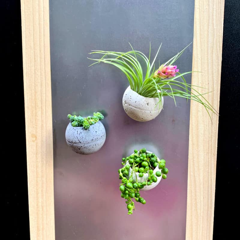 3 magnetic cement planters
