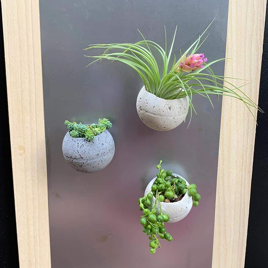 3 diy cement planters on a magnet board