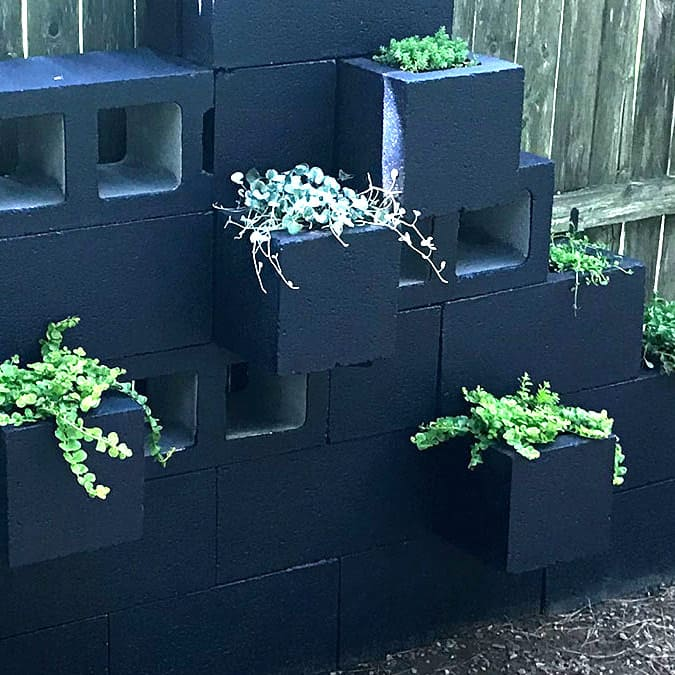 vertical cinder block planter wall