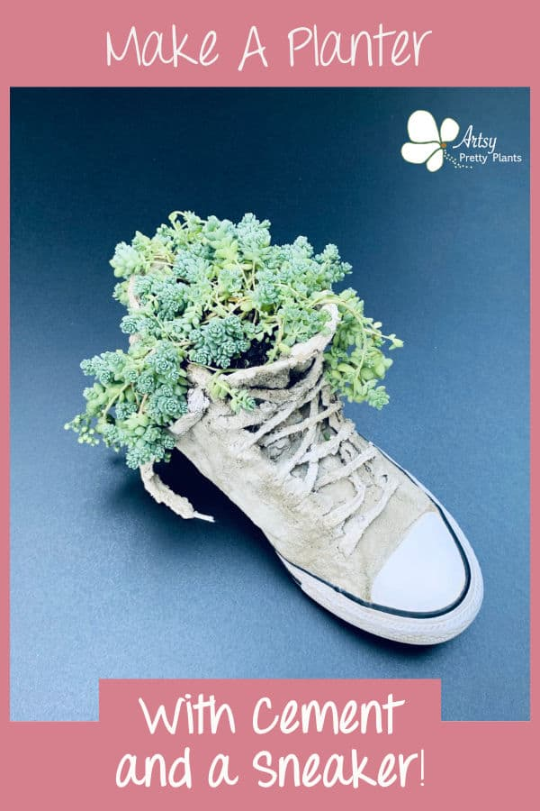 Tutorial pic of a sneaker with a plant inside