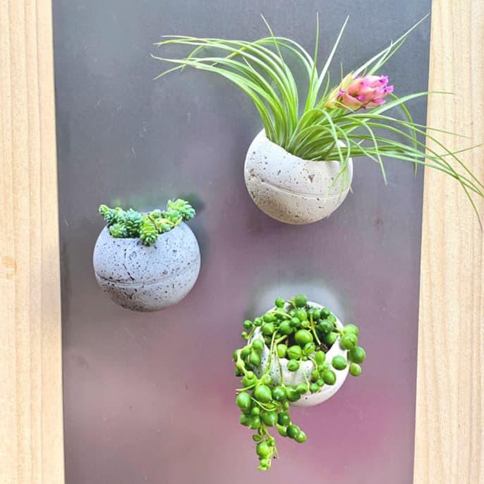 magnetic cement planter