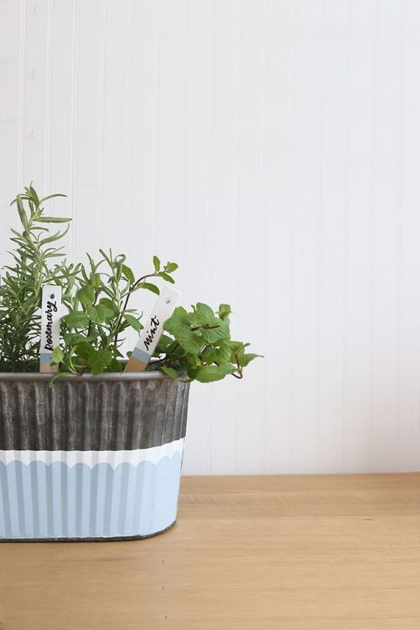 galvanized bucket herb box