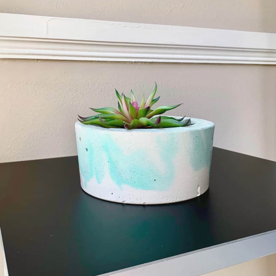 white concrete marbled planter with succulent
