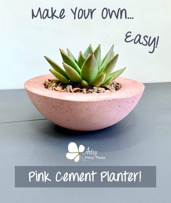 DIY Cement Succulent Planter