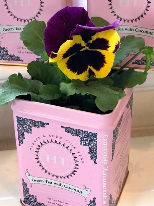 21 Easy DIY Planter Projects using pink tin can