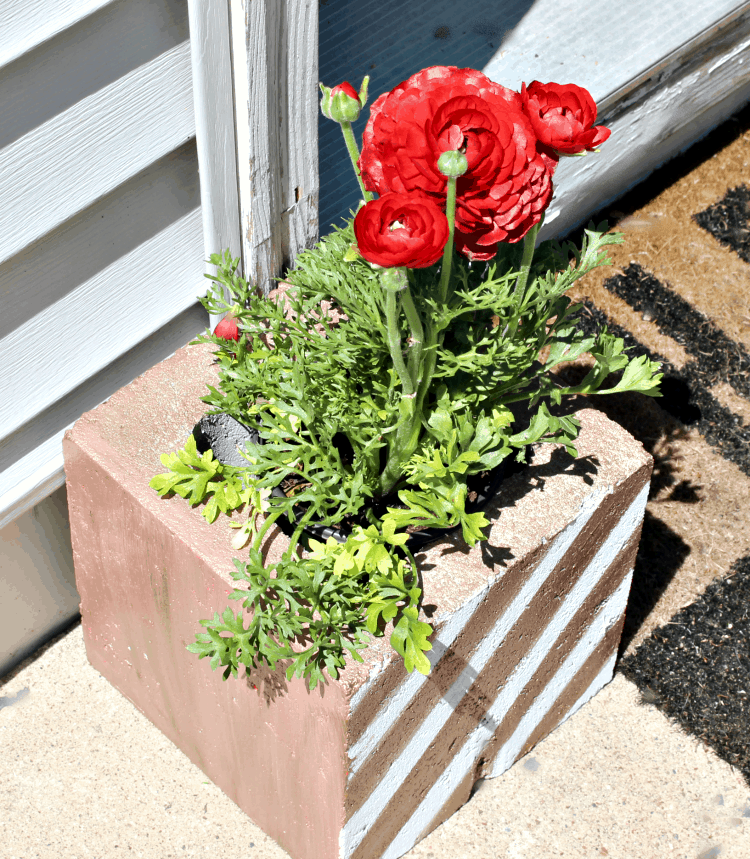 21 Easy DIY Planter Projects using galvanized cinder block planter