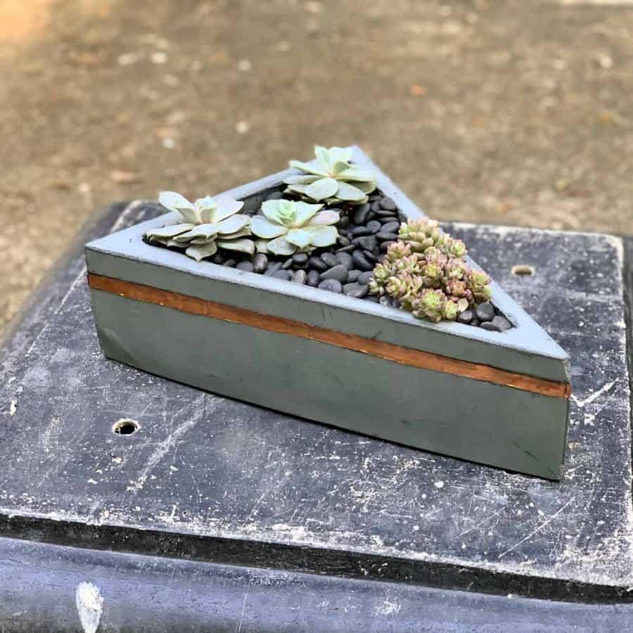 triangular concrete planter with copper line- succulents inside