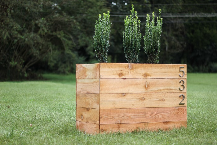 cedar-planter-boxes with ferns