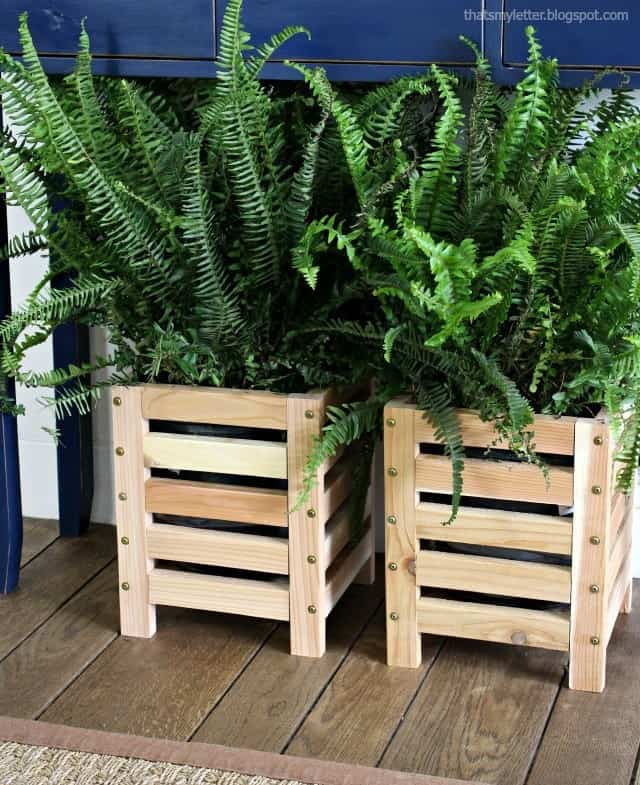 cedar scrap wood planter with ferns