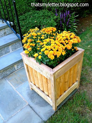 planter box from fencing
