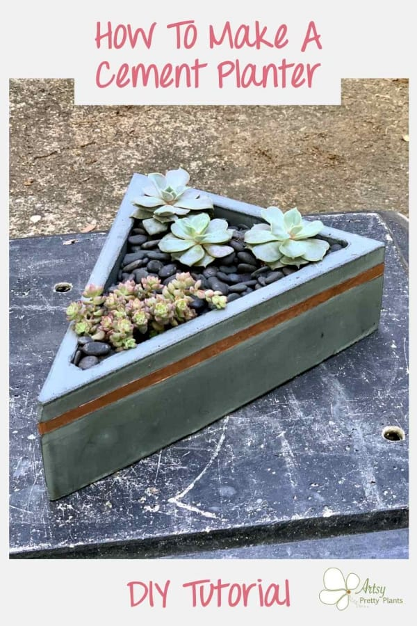 triangular concrete planter with copper line- succulents inside