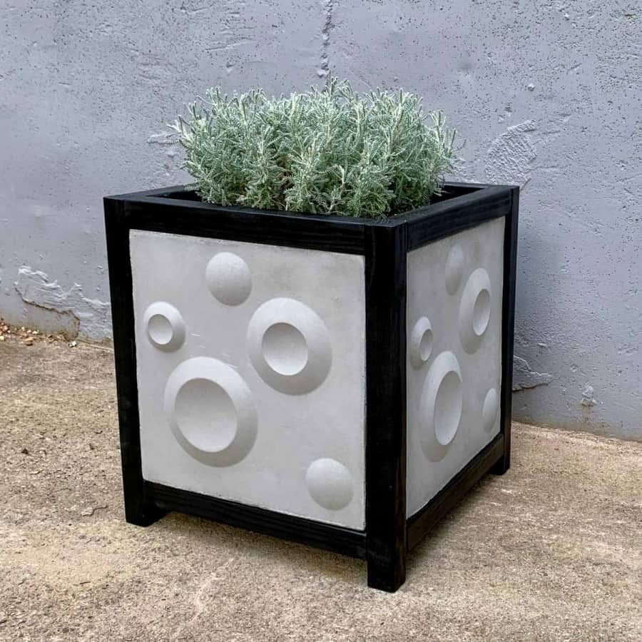 modern black and grey 3d cement tile planter box with silvery gray plant inside