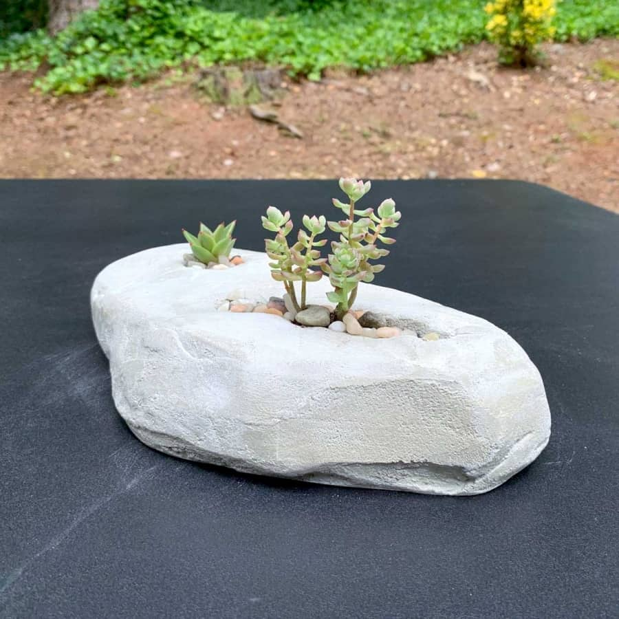 oblong rock made from cement with succulent inside
