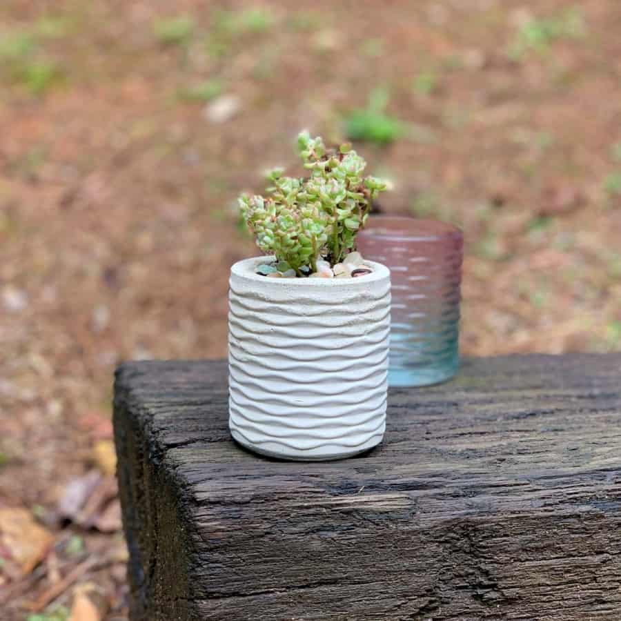 cement planter with replicated object behind it- made from a silicone mold