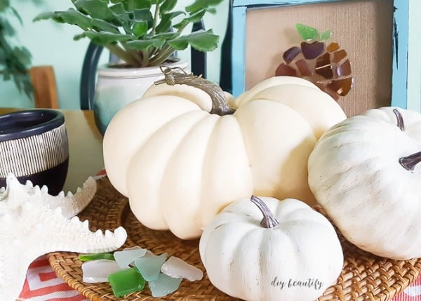 white pumpkins of various sizes and shades decorated on a table