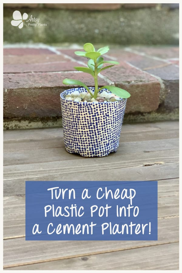 Plastic pot turned into a cement planter.