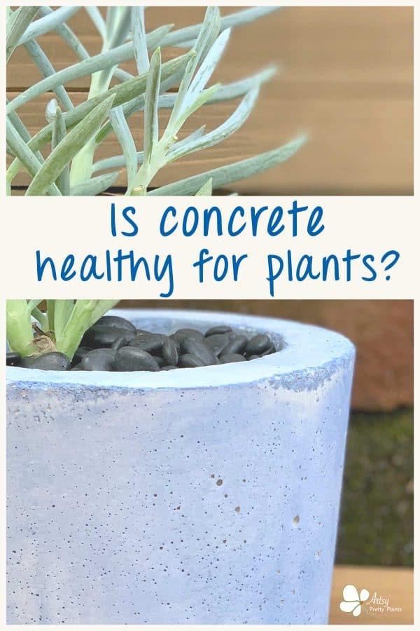 Concrete Planters Safe For Plants