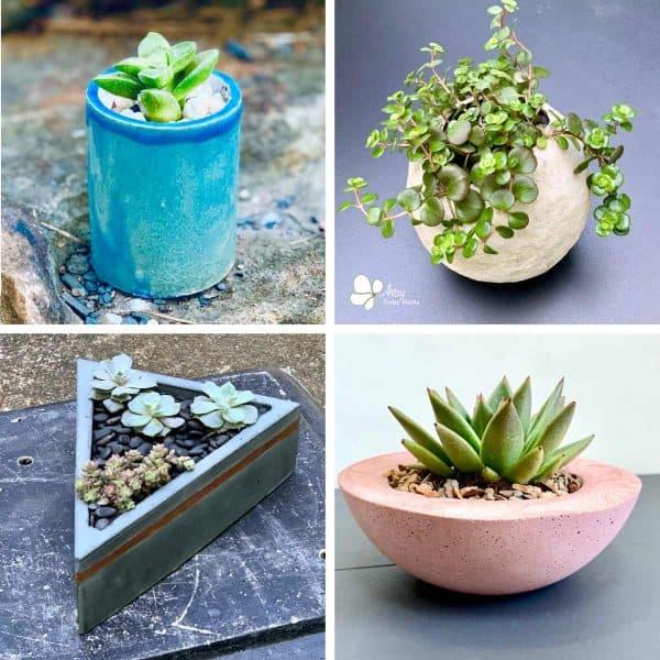 Are Concrete Planters Safe For Plants?