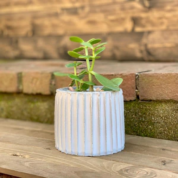 Make A Fluted Concrete Planter With Straws