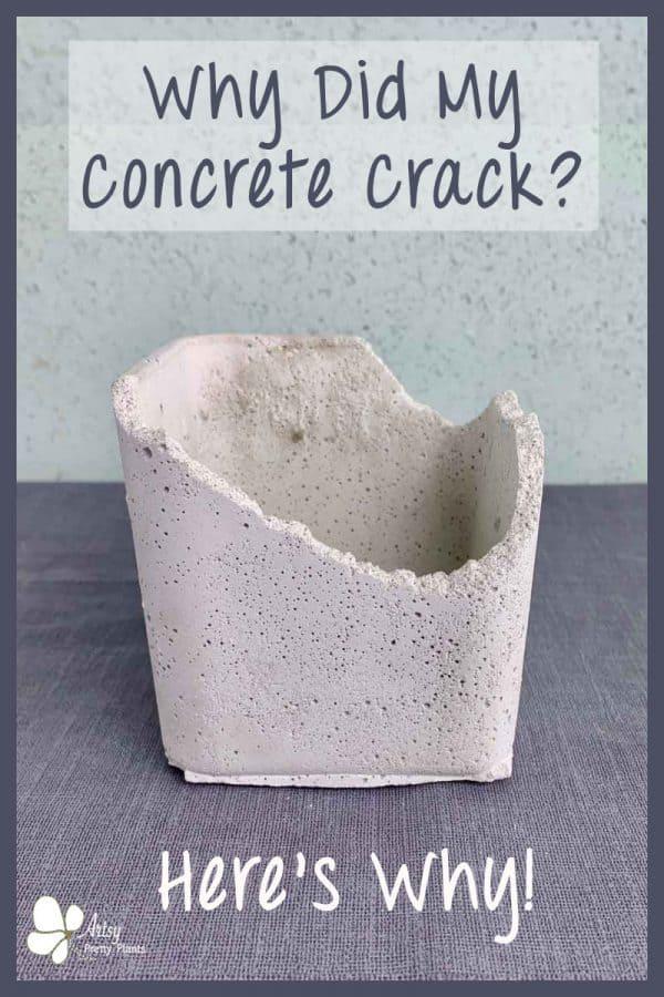 cracked concrete pot