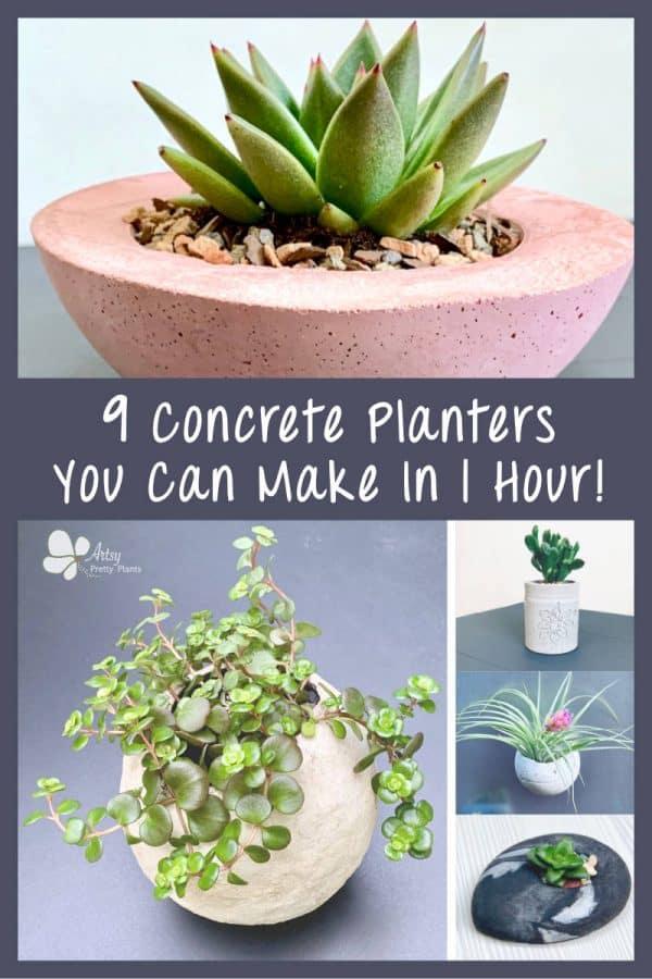 multiple pretty, quick diy concrete planters DIY