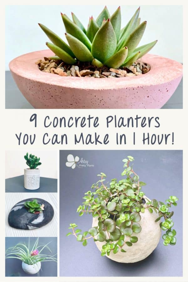 multiple pretty, DIY cement planters
