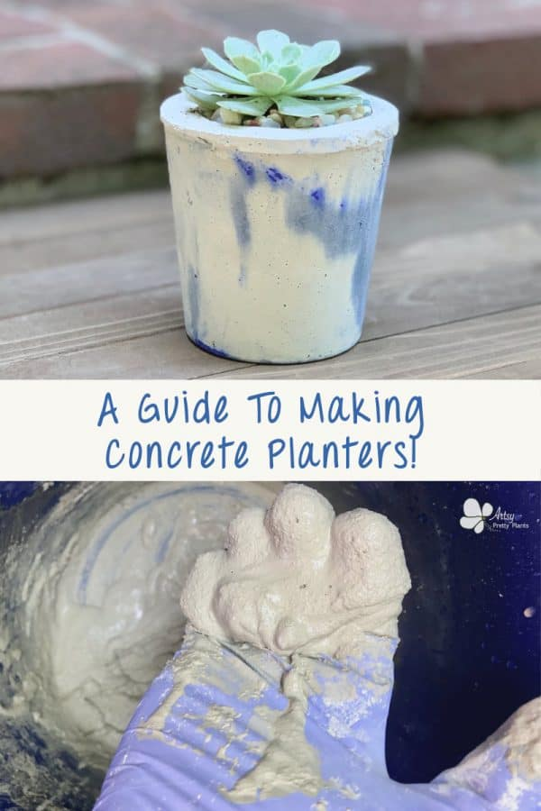 concrete plant with succulent and hand holding wet cement mixture
