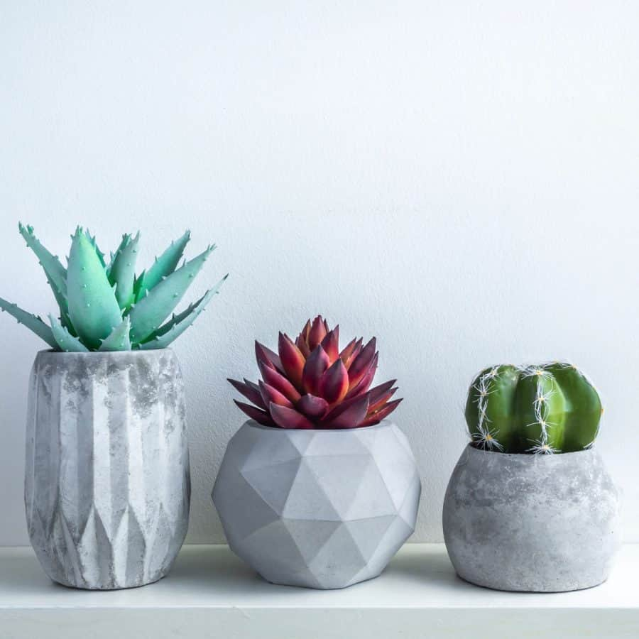 3 different sized and shaped concrete planters on a shelf- smooth round, and two geometric planters