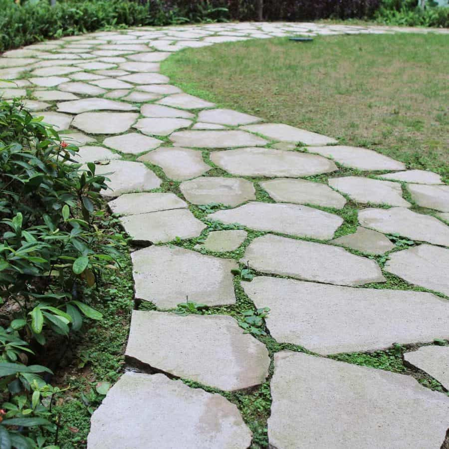 Amazing pathway of stepping stones with gras coming up in between each stone