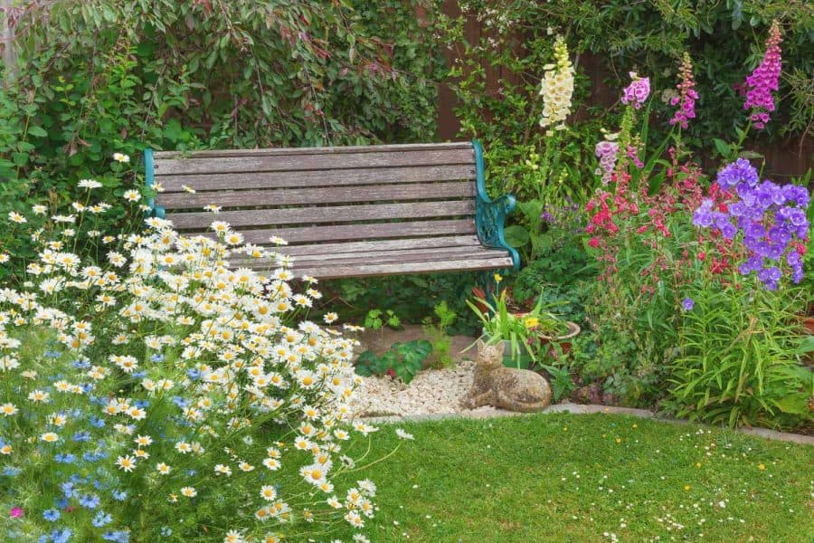 design a native plant garden- wooden bench in middle of native plant garden as focal point