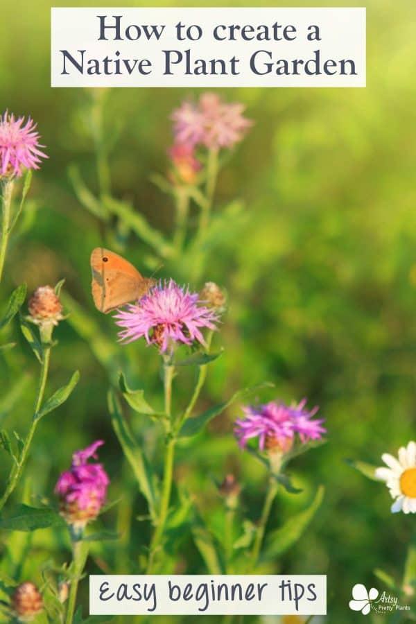 design a native plant garden- pollinator garden with butterfly on flower