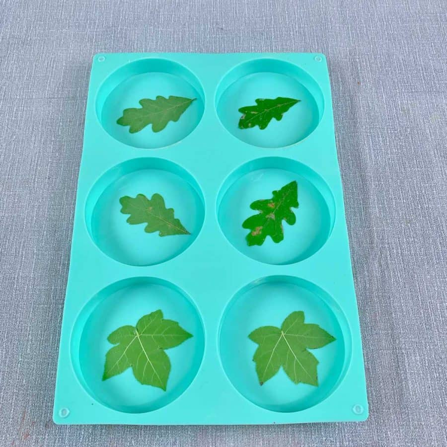 Concrete Coasters- silicone mold with a leaf inside of each cavity, smooth against bottom.