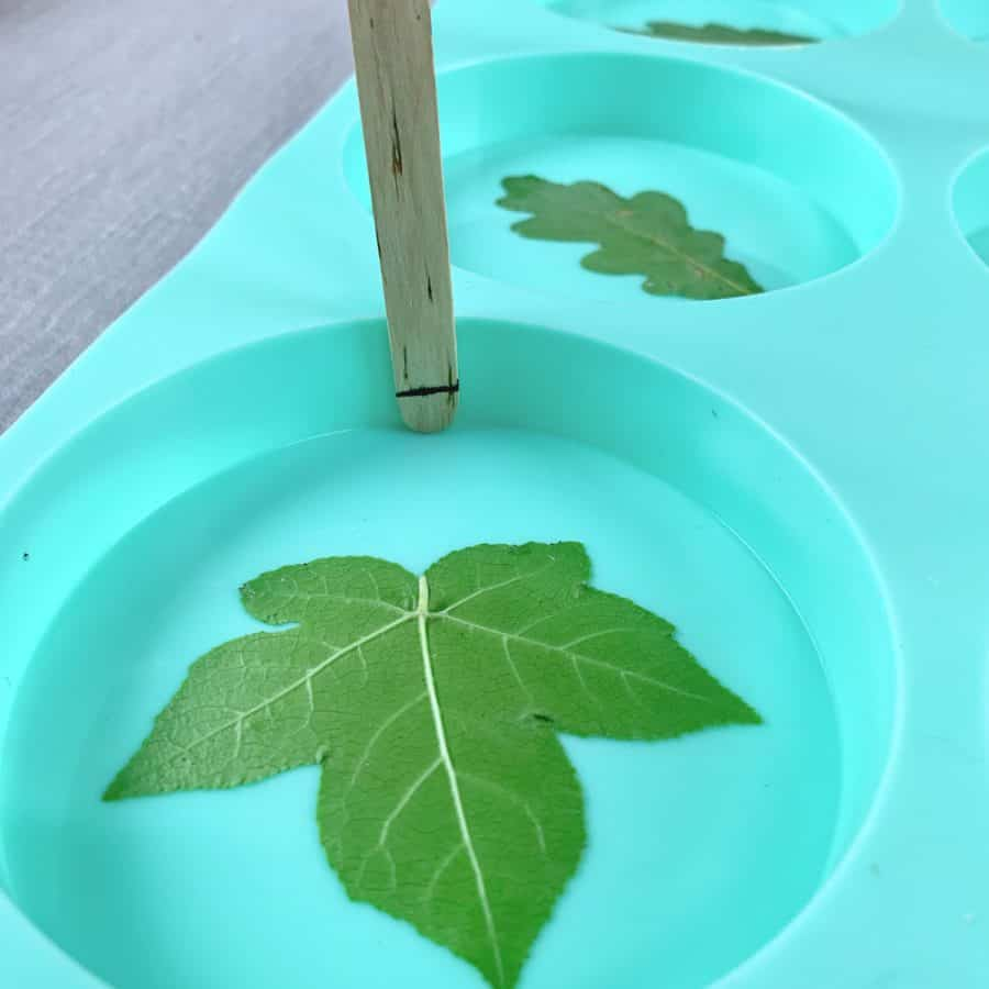 Concrete Coasters- close up of leaf inside mold cavity and craft stick showing marks of 1/4