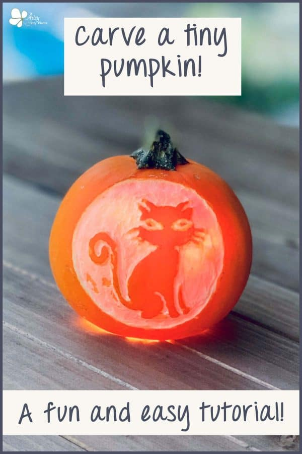 Mini Pumpkin Carving Of A Cat