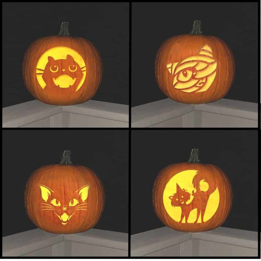 4 pumpkin s with different patterns of cats carved onto them