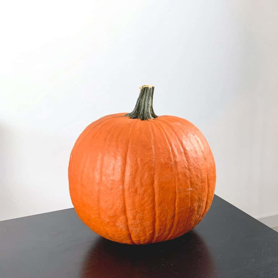 large pumpkin on table ready to be carved into cat design for jack o lantern