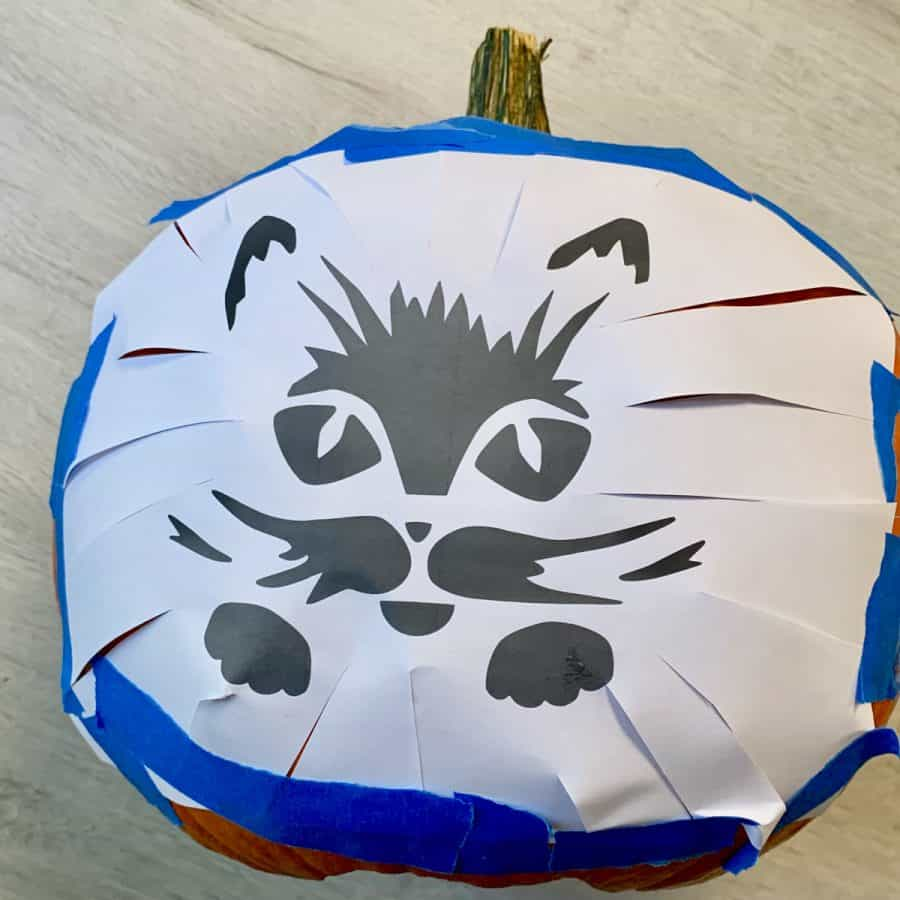 paper printout of cat with scissor cuts on it, taped around pumpkin