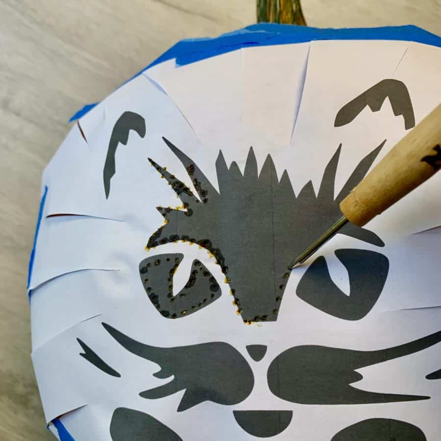 awl punching holes on outlines of cat printout so jack o lantern can be carved